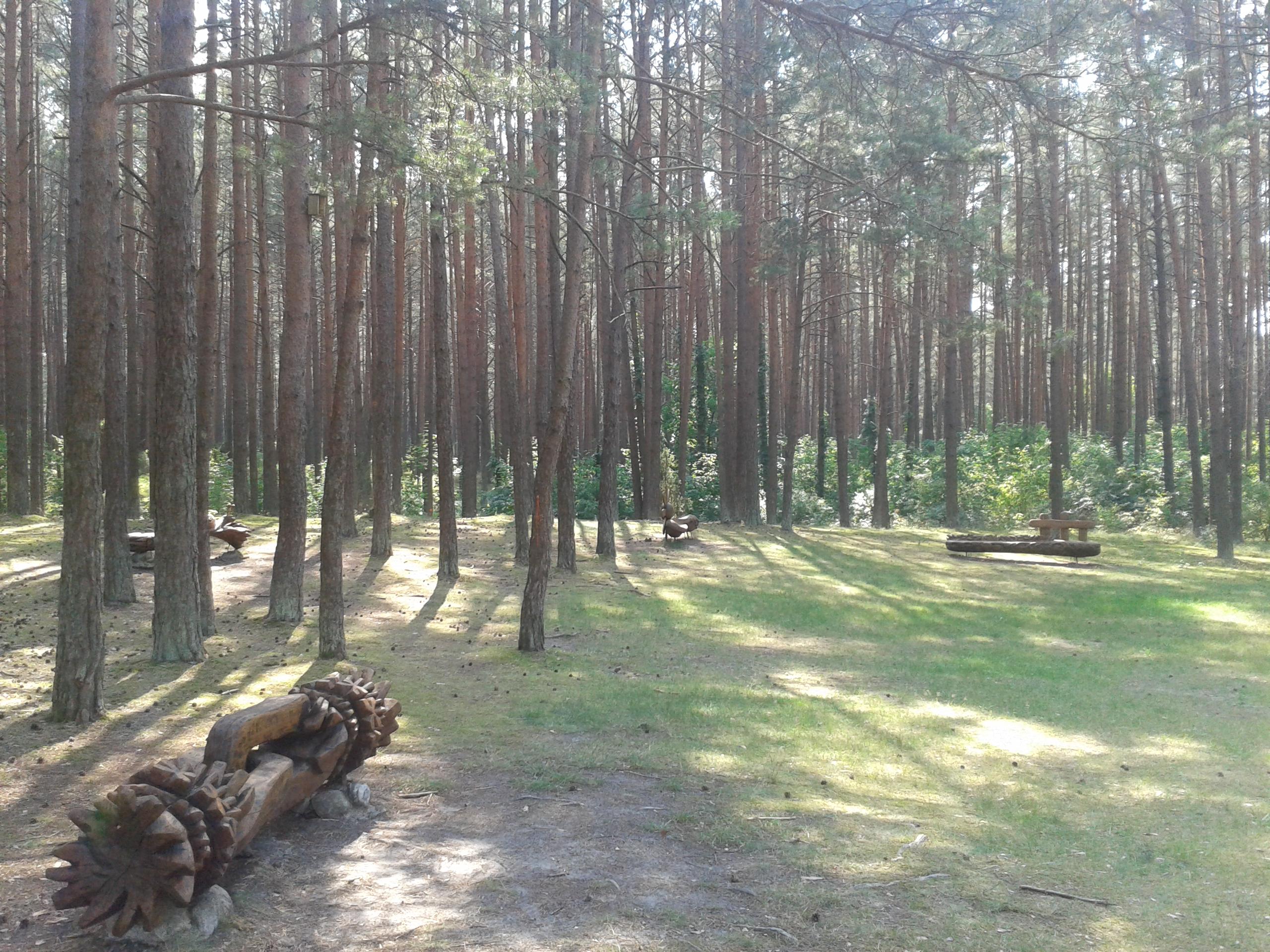 Putino park-20150811(2)
